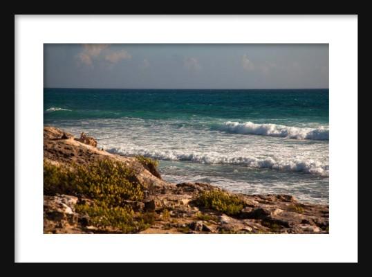 Carribean IV Framed