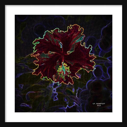 Neon Hibiscus Framed