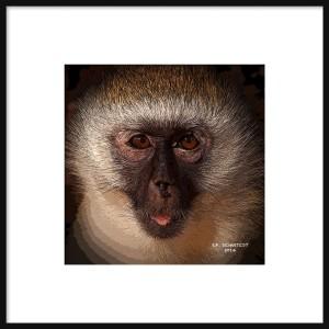 Posterized Monkey Framed