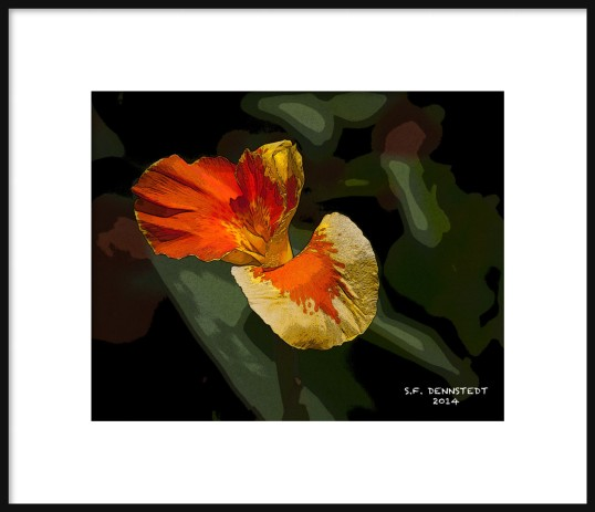 Hibiscus Stylized Framed