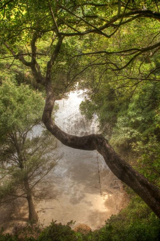 Cascades 4 WEB