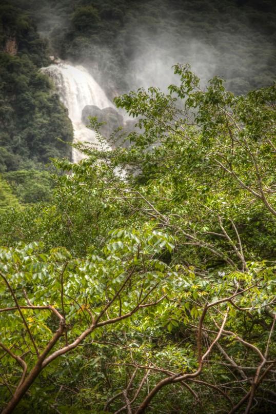 Cascades 5 WEB