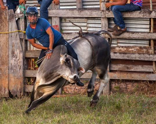 Rodeo WEB IMG_0415
