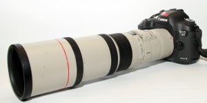 Canon 5D Mk3 and 400mm