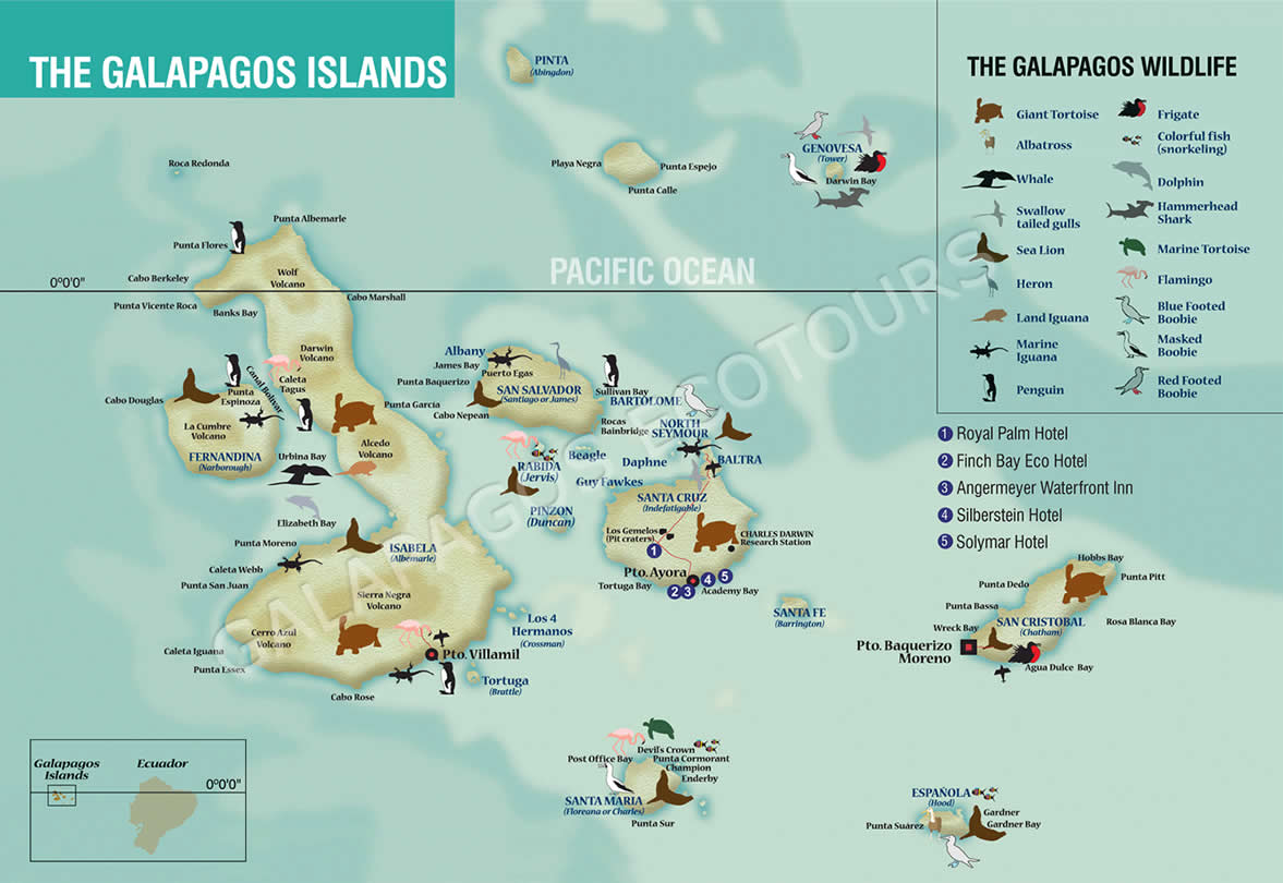 Off To Search For Boobies Expat Journal Postcards From The Edge - Galapagos map
