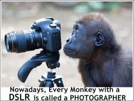 funny-photography-joke