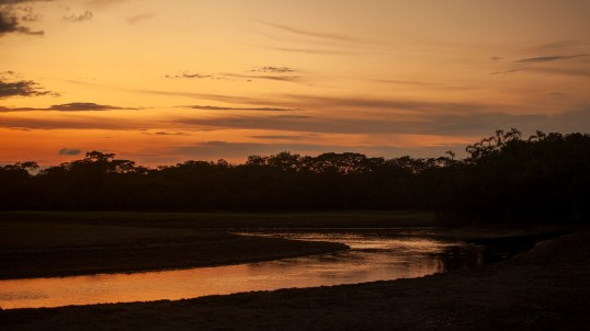 Sunset in the Amazon - Amazon River Basin, Cuyabeno, Ecuador