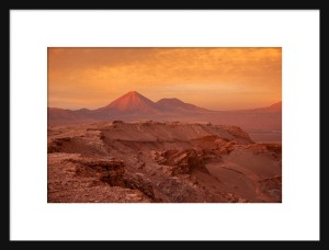 Matted & Framed Print